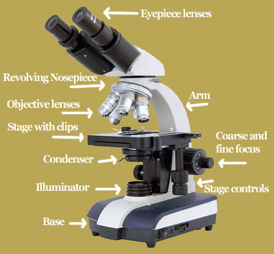 Microscope Parts - Microscopy-UK full menu of microscopy and
